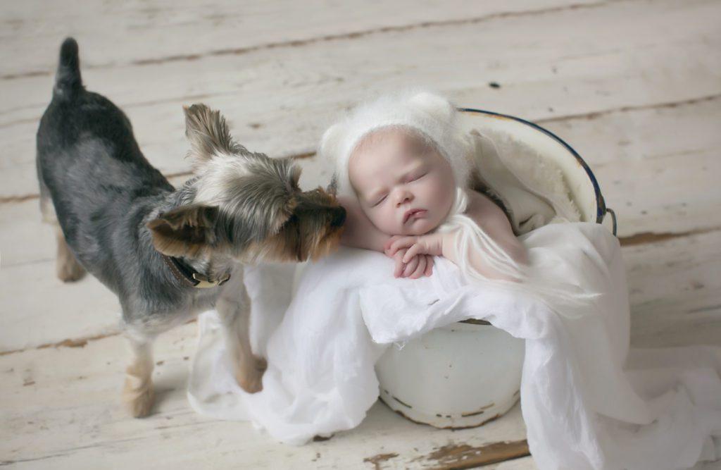 Adorable newborn session!